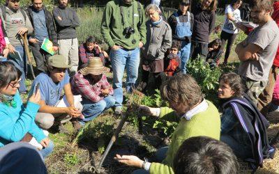 Equipo de investigadores y profesionales del Centro Ceres, se capacitó en agricultura regenerativa y de diseño integral de predios en Región del BioBio.