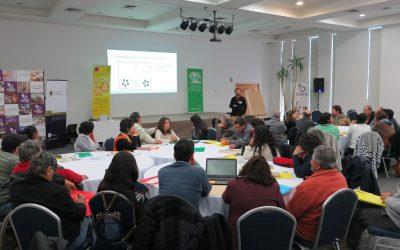Potenciando el Capital Social y redes de Innovación para la Sustentabilidad del Patrimonio Apícola: Talleres territoriales y regionales.