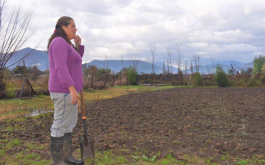 Centro Ceres realiza visita técnica en NAP Catemu