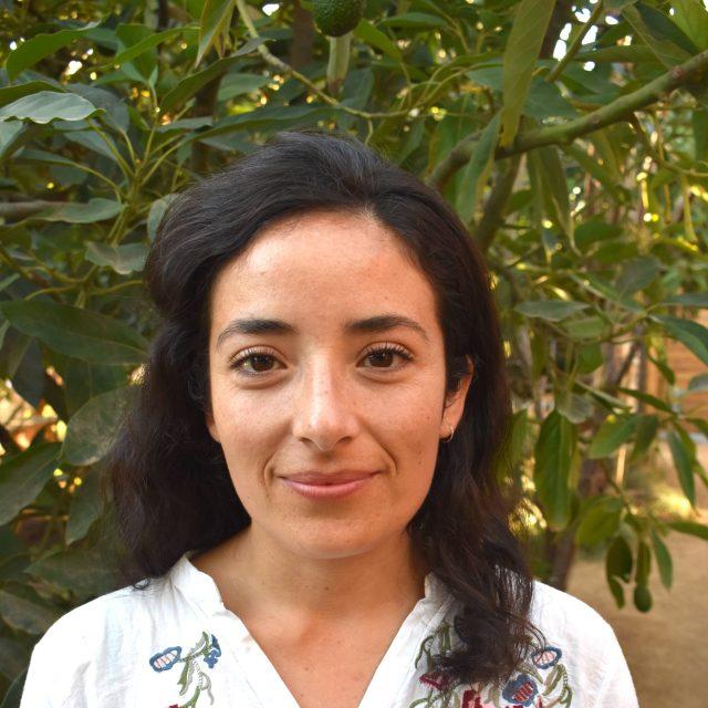 Constanza Oyarce Díaz
