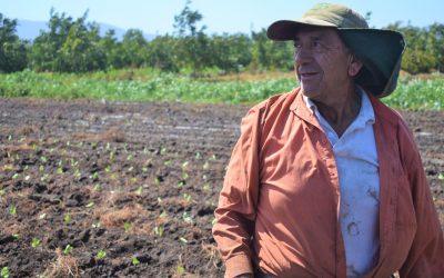 Pequeño agricultor liderará nuevo núcleo de aprendizaje participativo en Quillota